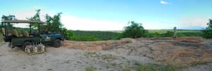 landscape_0