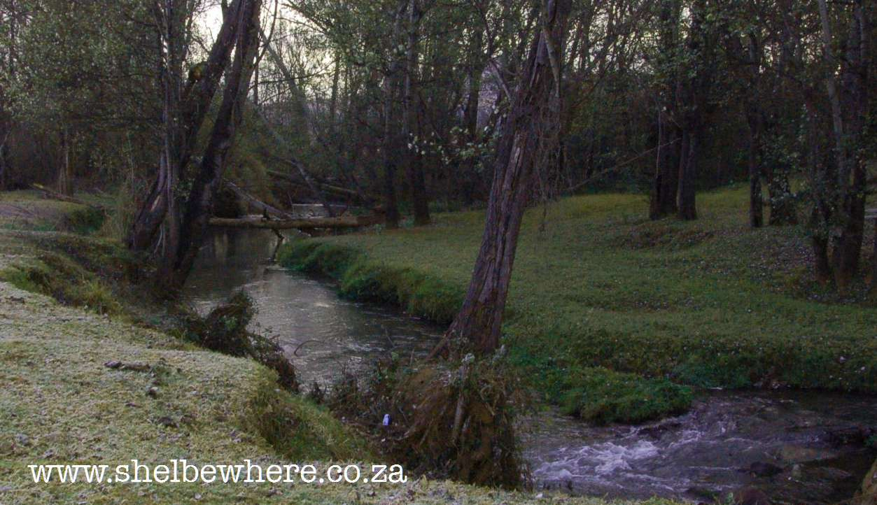 Winter fly fishing brookwood trout fishing farm cradle for Fish river tree farm